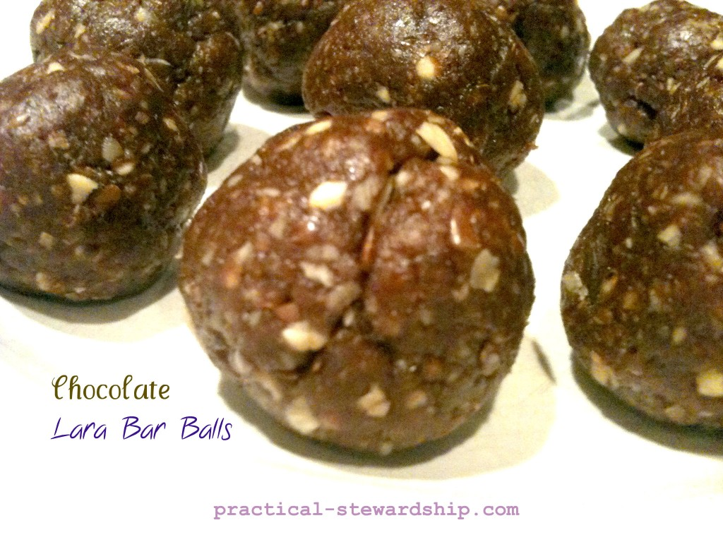 Chocolate Lara Bar Balls