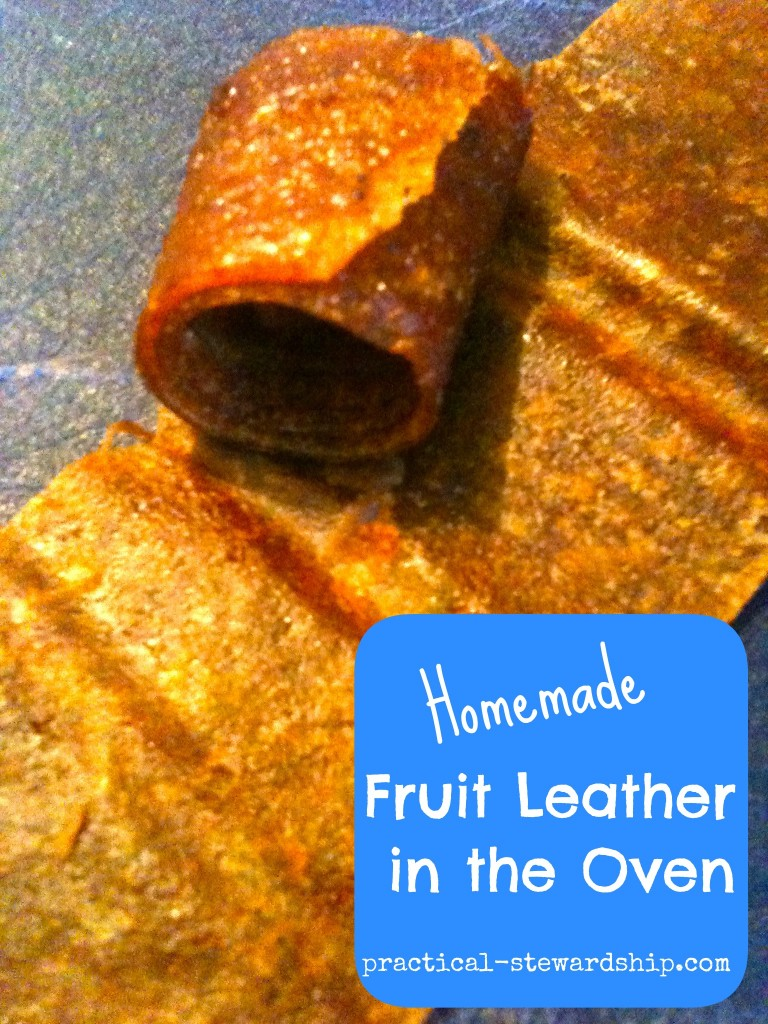 Homemade Fruit Leather in the Oven