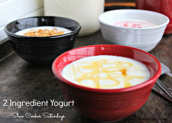2 Ingredient Yogurt