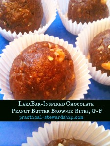Lara Bar-Inspired Chocolate Peanut Butter Brownie Bites @ practical-stewardship.com