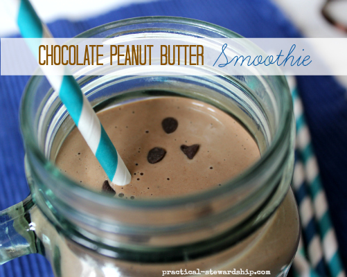 Vegan Chocolate Peanut Butter Smoothie