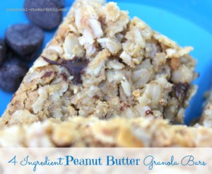 4 Ingredient Granola Bar