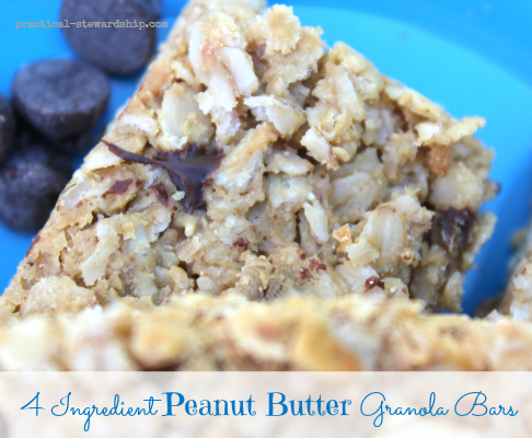 4 Ingredient Peanut Butter Granola Bars