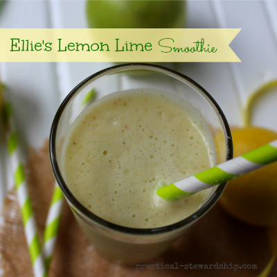 Lemon and Lime Smoothie