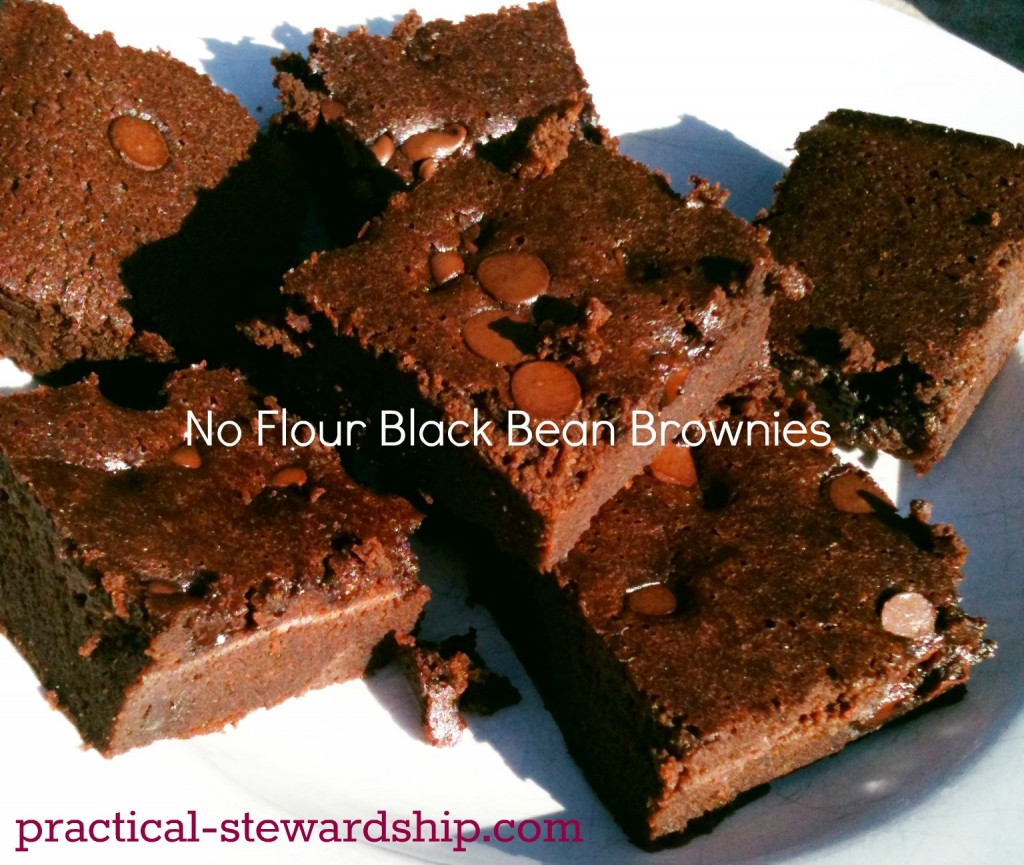 No Flour Black Bean Brownies