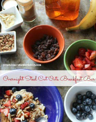 Overnight crock-pot Steel Cut Oats Breakfast Bar