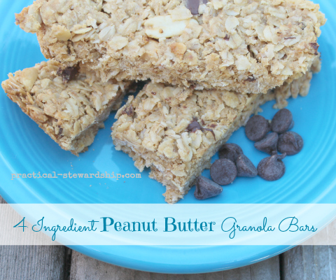 Peanut Butter chewy Granola Bar 4 ingredient