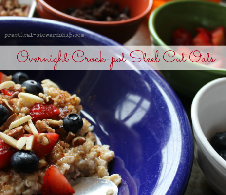 overnight steel cut oats in the crock-pot