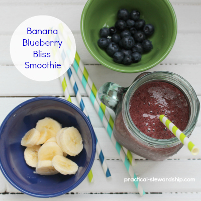 Banana Blueberry Bliss Smoothie