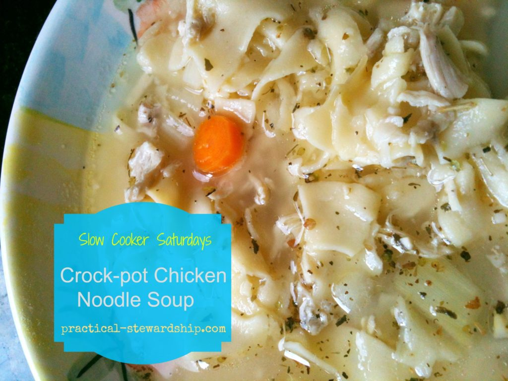 Crock-Pot Chicken Noodle Soup @ practical-stewardship.com