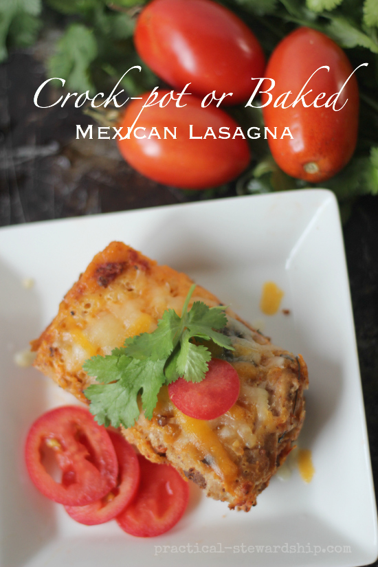 Slow Cooked or Baked Mexican Lasagna