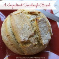 Sourdough Bread Recipe and Sourdough Start Recipes