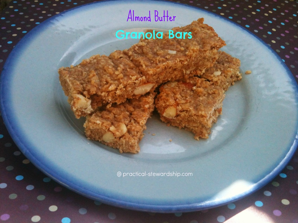 Almond Butter Granola Bar