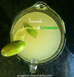 Lemon and Limeade Recipe