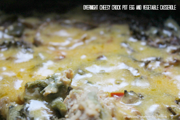 Overnight Cheesy Crock Pot Egg and Vegetable Casserole