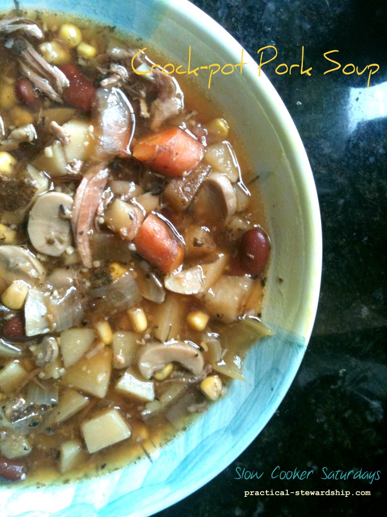 Crock-pot Pork Roast Soup