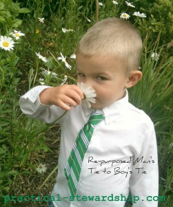 Re-purposed Men's Tie to a Boy's Tie