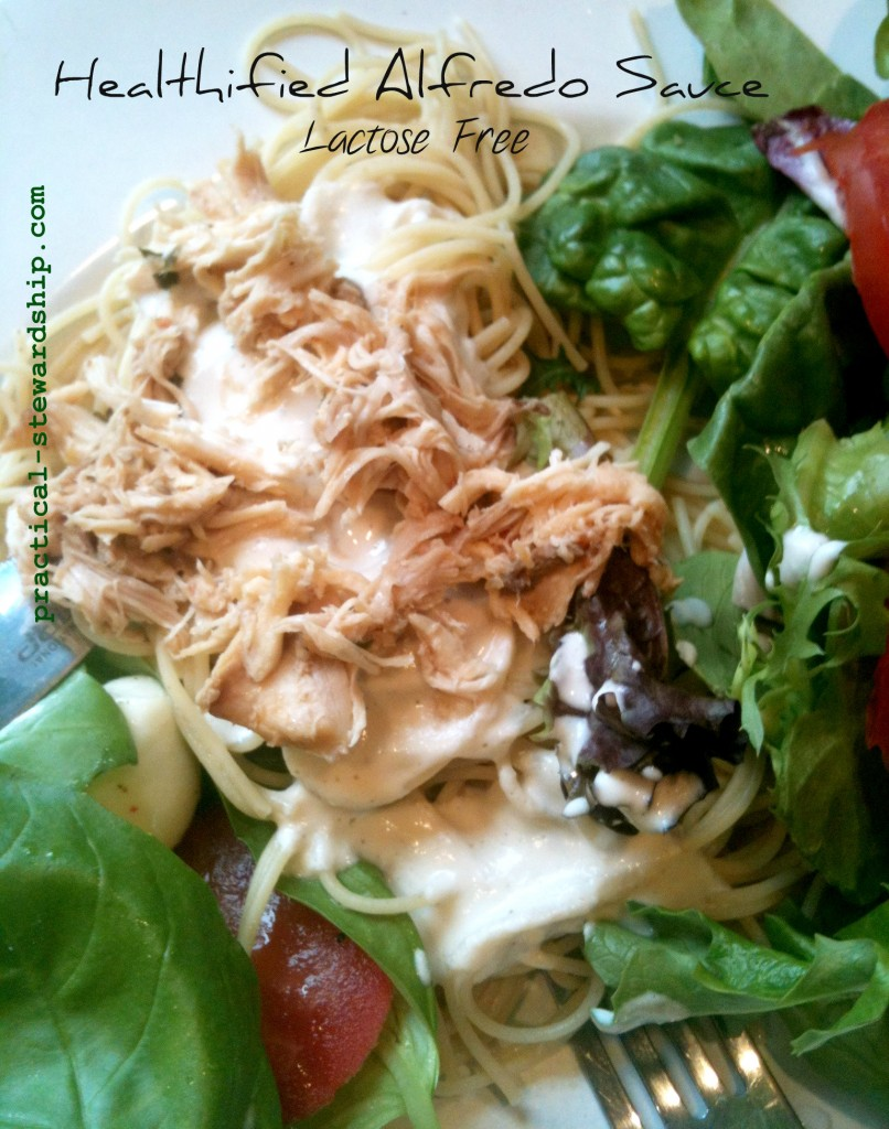 Healthified Raw Alfredo Sauce Lactose Free