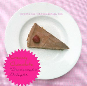 "Chocolate ""Cheesecake"" Delight @ practical-stewardship.com"
