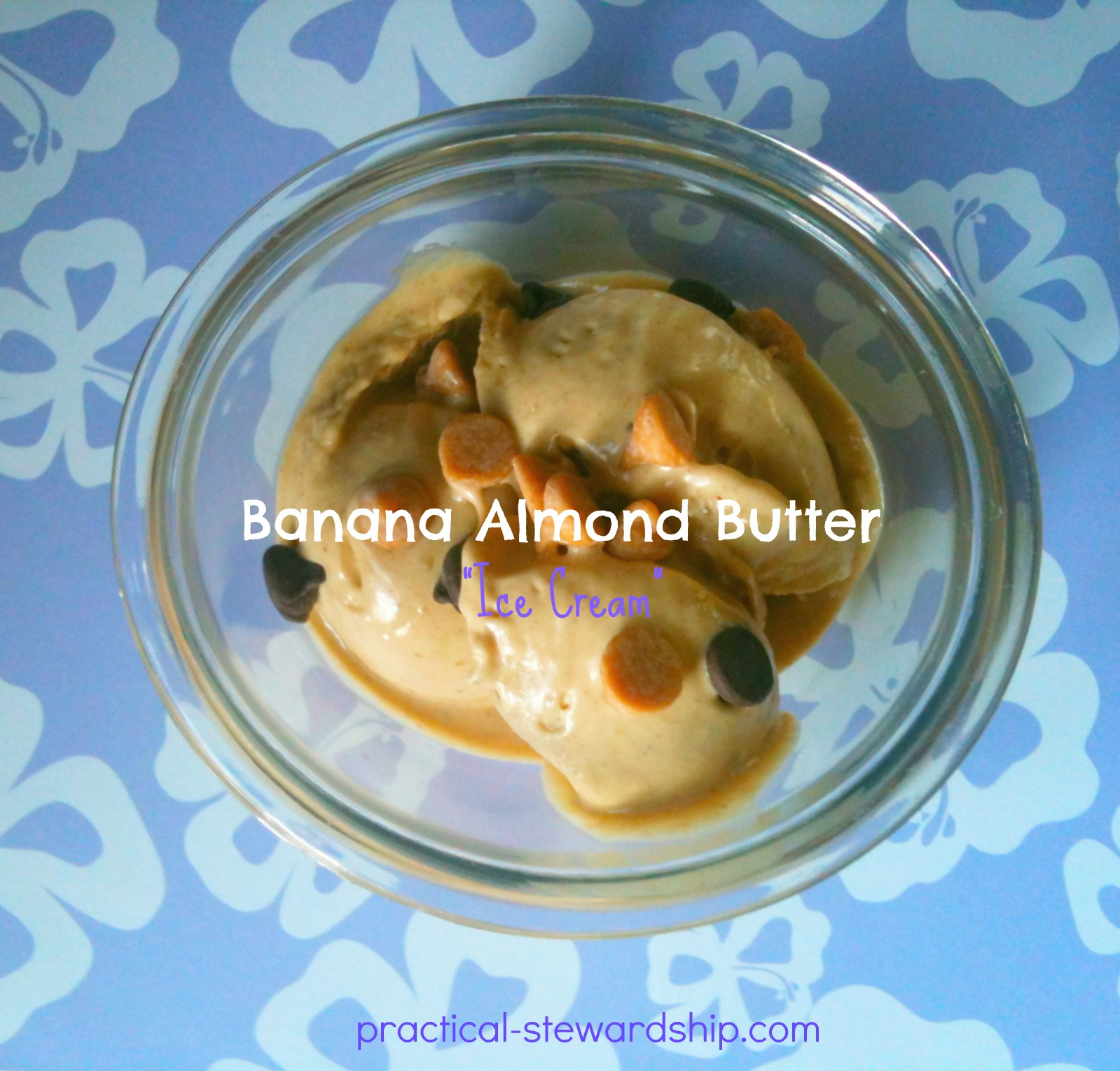 "Banana Almond Butter ""Ice Cream"""