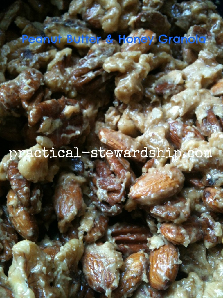 Peanut Butter Coated Granola