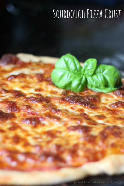 Pizza with a Sourdough Crust