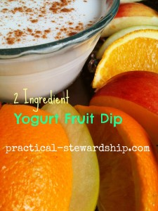 Yogurt Fruit Dip @ practical-stewardship.com