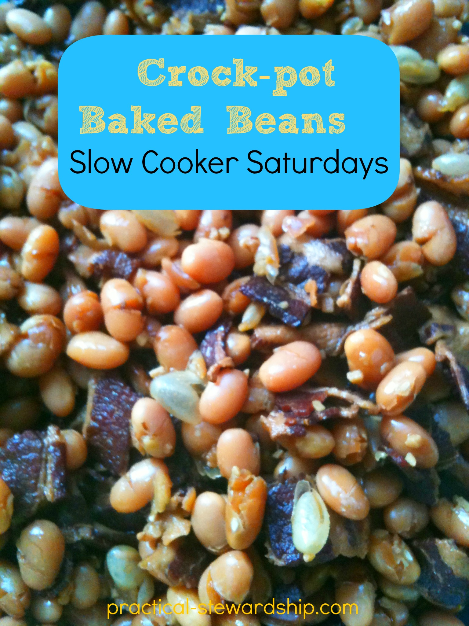 Slow Cooker Recipes-Practical-Stewardship.com