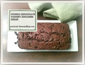Double Chocolate Yogurt Zucchini Bread Frosted