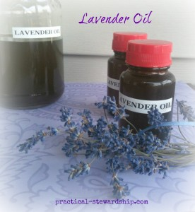 Lavender Oil @ practical-stewardship.com
