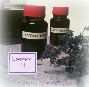 Lavender Oil Bottled @ practical-stewardship.com