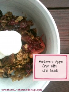 Blackberry Apple Crisp with Chia Seeds in the Crock-pot or Not