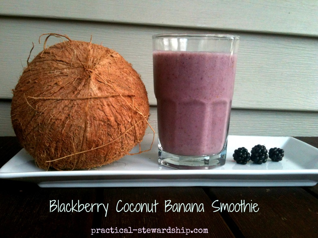 Blackberry Coconut Banana Smooth Recipe @ practical-stewardship.com