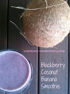 Blackberry Coconut Banana Smoothie @ practical-stewardship.com