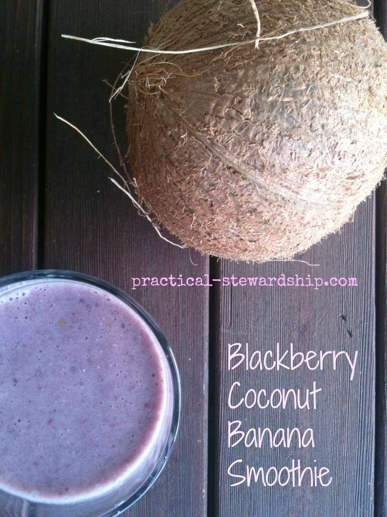 Blackberry Coconut Banana Smoothie