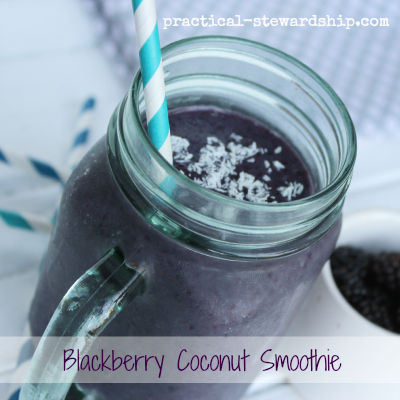 Blackberry Coconut Smoothie