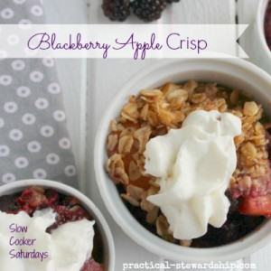 Blackberry Apple Crisp in the Crock-pot