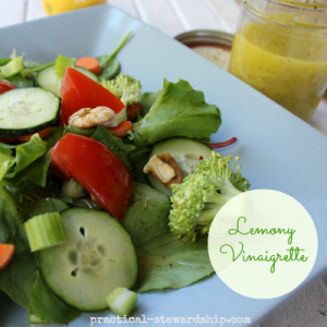 Lemony Vinaigrette with Salad