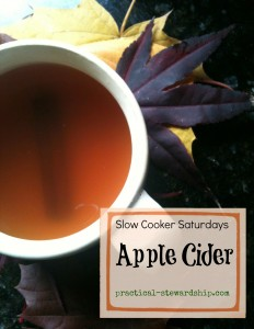 Apple Cider in the Crock-pot @ practical-stewardship.com