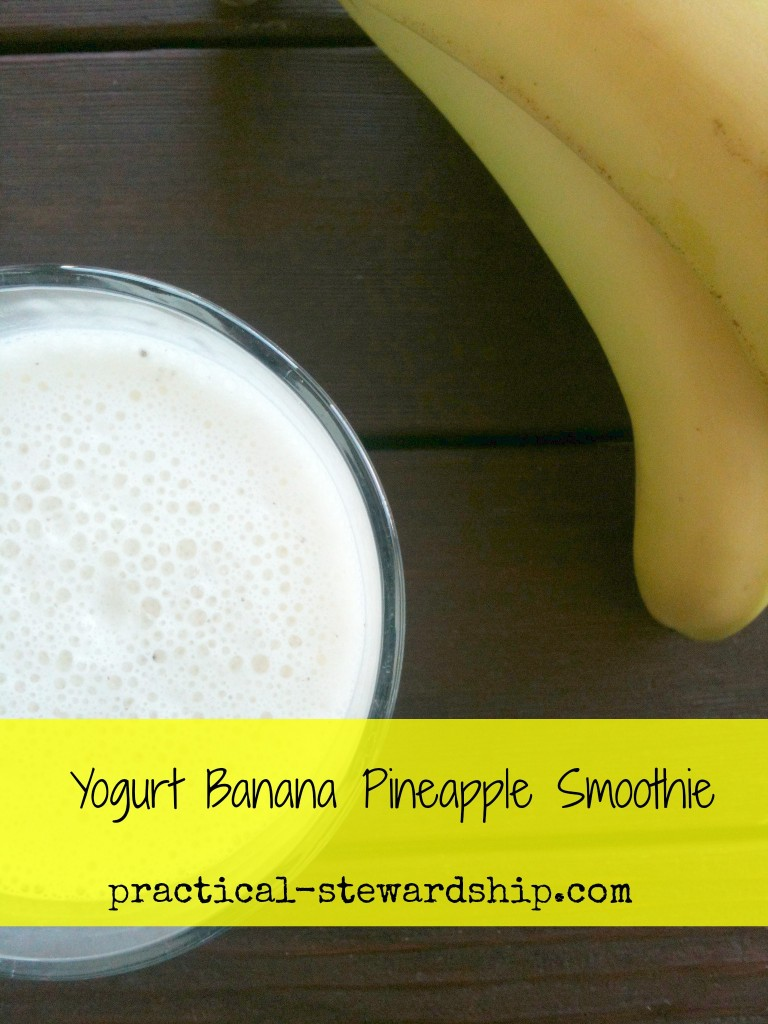 Chia Seed Yogurt Banana Pineapple Smoothie