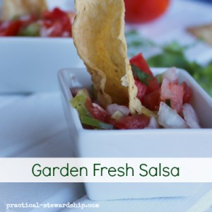 Homemade Raw Garden Salsa