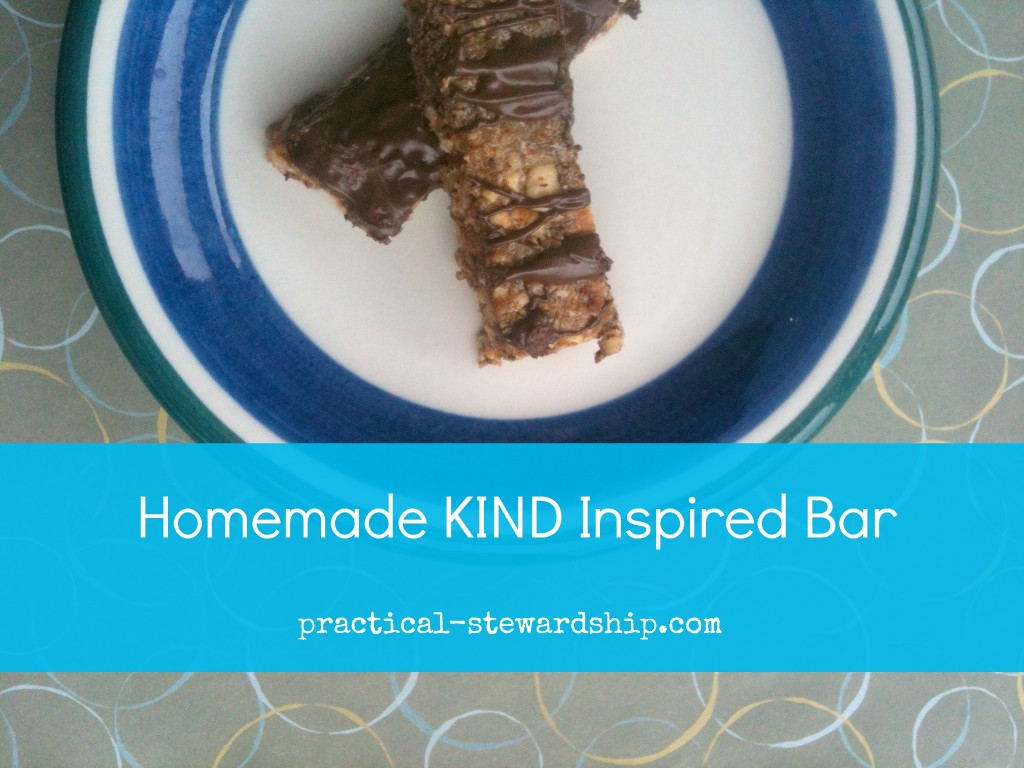 Homemade KIND Inspired Bar Chocolate