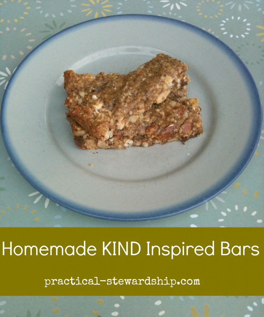 Homemade KIND Inspired Bars @ practical-stewardship.com