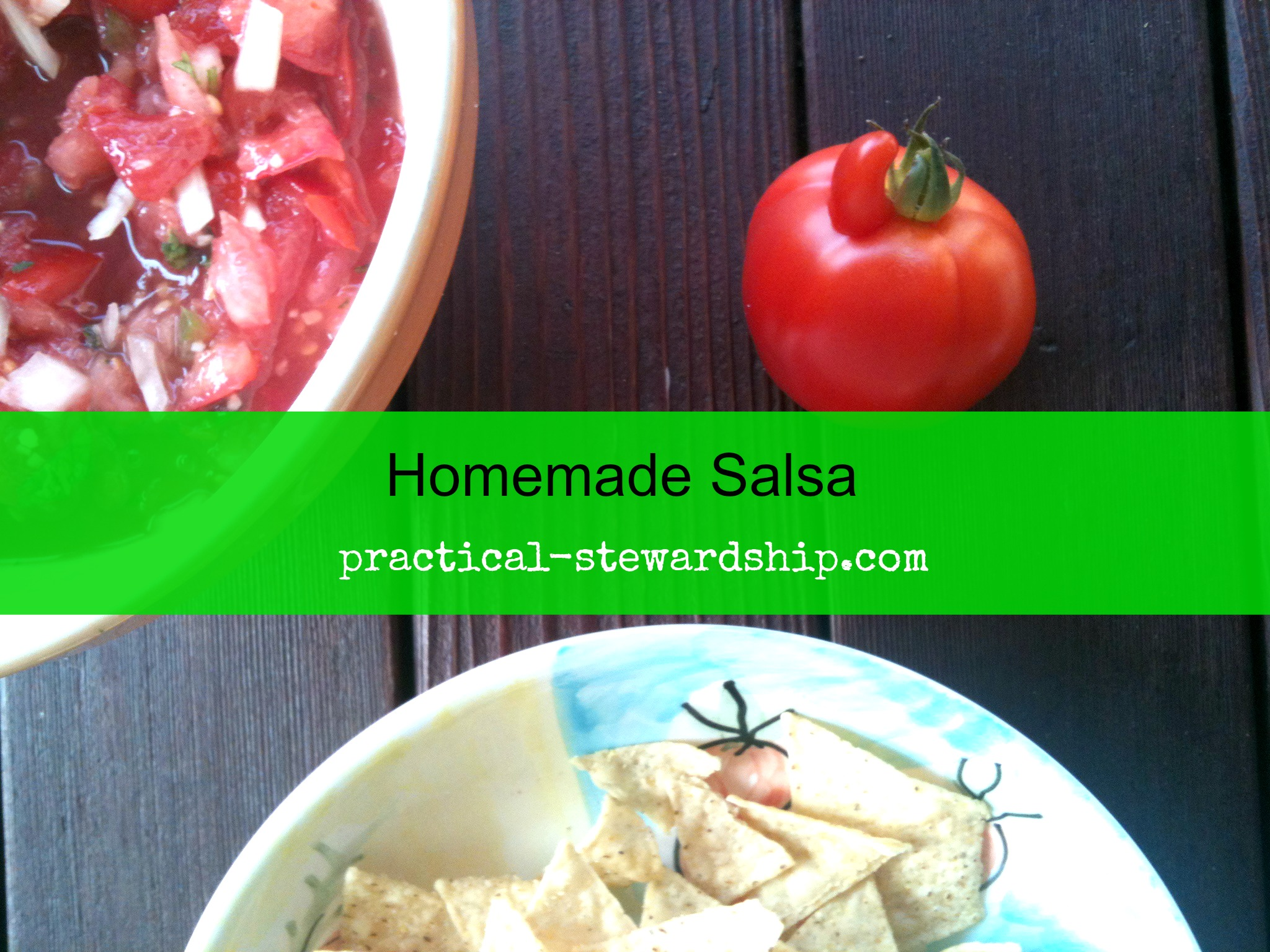 Homemade Salsa @ practical-stewardship.com
