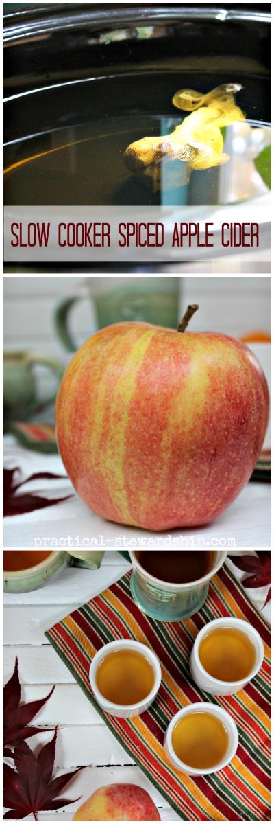 Slow Cooker Spiced Apple Cider