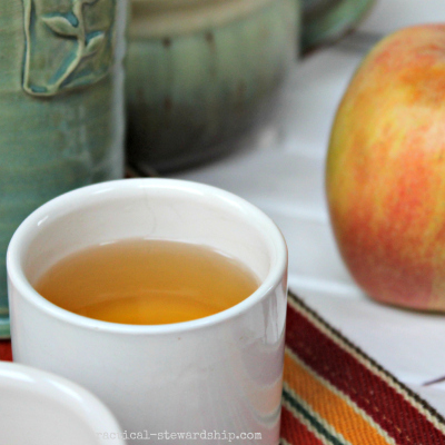 Spiced Apple Cider Mugs