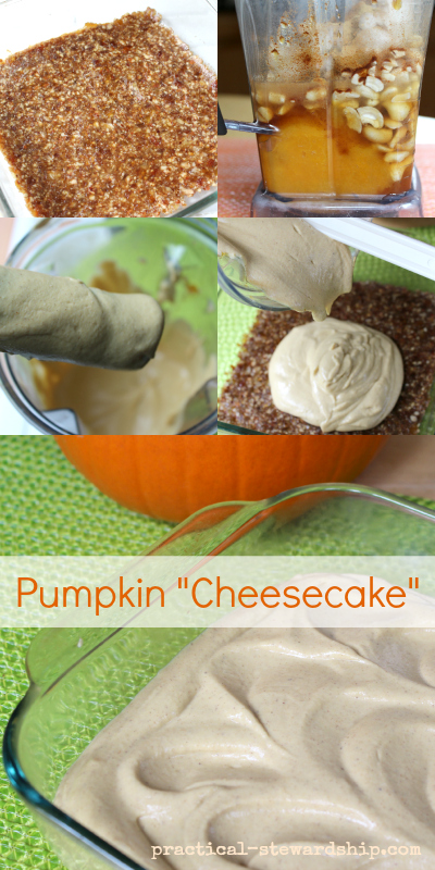 Pumpkin Cheesecake, V