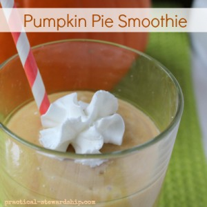 Pumpkin Pie Smoothie, Vegan