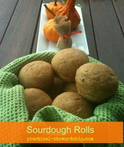 Sourdough Rolls @ practical-stewardship.com