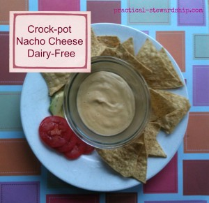 Crock-Pot Nacho Cheese, Dairy-free